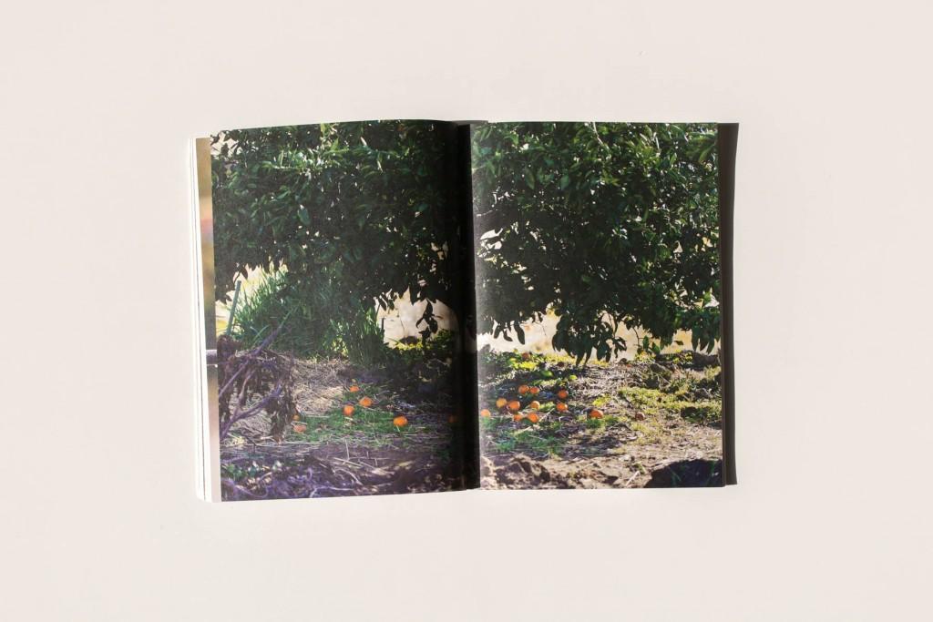 books180118-4
